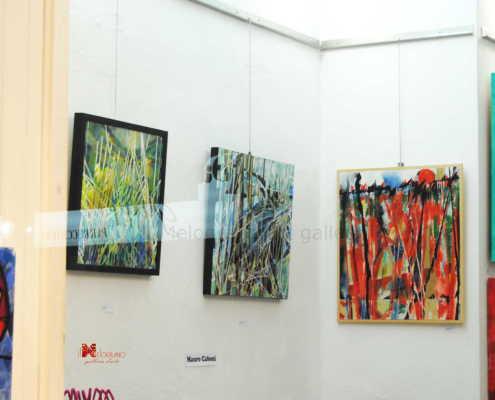 Mauro Caboni Il Melograno art gallery (2)
